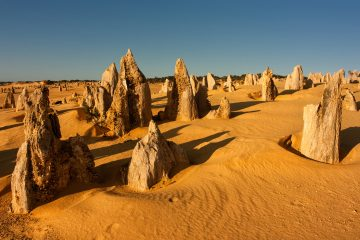 Pinnacles were formed approximately 25,000 to 30,000 years ago, after the sea receded and left deposits of sea shells. Western Australia, 2012.